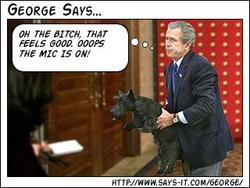 George Bush says 2