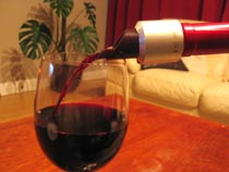 Magnetised wine plug